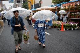 Nhật Bản cho phép thực phẩm biến đổi gen tân tiến lưu thông trên thị trường