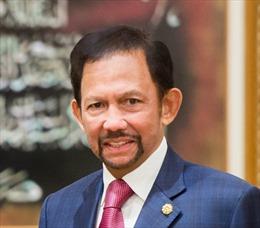 Quốc vương Brunei Darussalambắt đầu thăm cấp Nhà nước tới Việt Nam