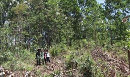 Nhường đất cho thủy điện Đăk Đrinh, người dân mòn mỏi chờ tiền đền bù
