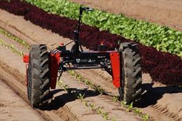 Phát triển công nghệ tự động hóa hỗ trợ nông dân tại Australia