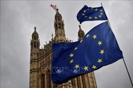 Anh miễn cưỡng ấn định ngày tham gia bầu cử Nghị viện châu Âu vào 23/5