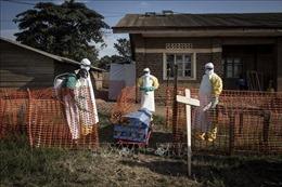 Trên 750 người đã tử vong vì dịch Ebola tại CHDC Congo