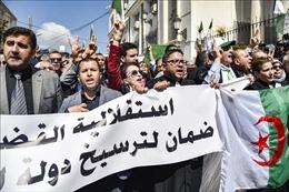Hàng trăm thẩm phán biểu tình tẩy chay giám sát cuộc bầu cử tổng thống Algeria