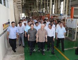 Tổng Bí thư, Chủ tịch nước Nguyễn Phú Trọng thăm Công ty cổ phần gỗ MDF VRG Kiên Giang