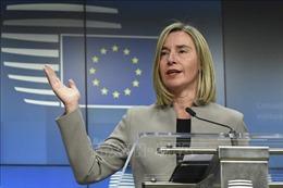 EU cam kết đứng về phía Cuba chống lại trừng phạt của Mỹ
