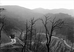Huyền thoại đường Hồ Chí Minh - Bài 1: Tuyến lửa bất tử
