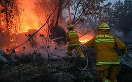 Israel kêu gọi quốc tế hỗ trợ dập tắt các đám cháy lớn