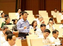 Cân nhắc thận trọng các tình tiết giảm nhẹ đối với Nguyễn Hữu Linh