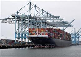 Dịch viêm đường hô hấp cấp do nCoV: Có thể làm chậm hàng xuất khẩu của Mỹ sang Trung Quốc
