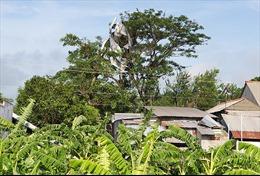 Mưa lớn kèm lốc xoáy làm tốc mái, sập 156 nhà ở An Giang