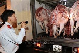 TP Hồ Chí Minh giám sát chặt chẽ chuỗi sản xuất, cung ứng thịt lợn