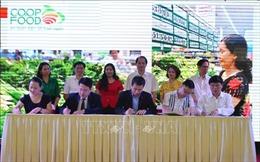 Hà Nội tiến tới không sử dụng túi ni-lon vào năm 2020