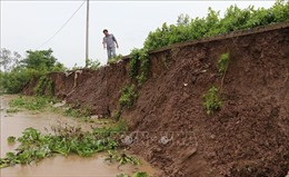 Sạt lở nghiêm trọng tuyến kênh vào chùa Hưng Thiện, Bạc Liêu