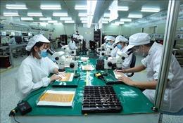 Việt Nam đang định hình một hệ sinh thái khởi nghiệp hấp dẫn nhất khu vực