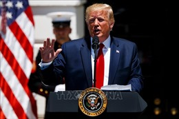 Đa số cử tri độc lập khẳng định không bỏ phiếu cho Tổng thống Mỹ Donald Trump