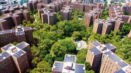 Năng lượng tái tạo - Bài 9: Từ nóc các tòa nhà chọc trời ở New York