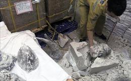 Phát hiện hơn 125 kg sừng tê giác vận chuyển qua cửa khẩu sân bay quốc tế Nội Bài