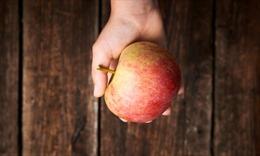 Phát hiện thú vị về lợi ích của táo đối với sức khỏe