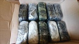 Bộ đội Biên phòng Lào Cai bắt giữ 2 đối tượng cùng 10kg ma túy đá