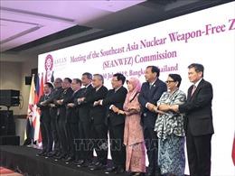 Việt Nam tham dự Hội nghị Ủy ban Hiệp ước khu vực Đông Nam Á không có vũ khí hạt nhân