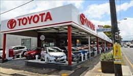 Lợi nhuận ròng của Toyota tăng khá bất chấp khó khăn của ngành ô tô