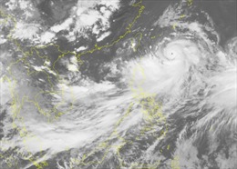 Các tỉnh, thành ven biển Quảng Ninh - Bình Địnhchủ động ứng phó với áp thấp nhiệt đới