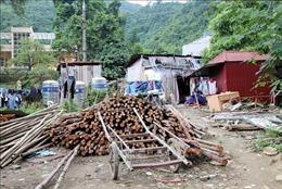 Tăng cường xử lý các vi phạm về đất đai tại cửa khẩu Tân Thanh