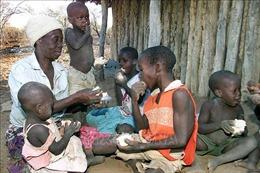 Miền Nam châu Phi thiếu lương thực trầm trọng do thiên tai