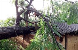 Lào Cai: Mưa đá bất thường tại huyện Si Ma Cai làm nhiều nhà bị sập, tốc mái