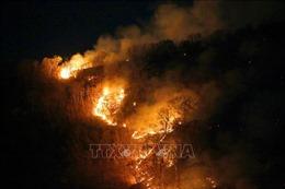 Paraguay và Bolivia nỗ lực ngăn chặn các đám cháy rừng ở vùng Amazon
