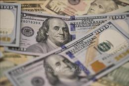 Fed chi nhánh New York tiếp tục bơm tiền vào thị trường