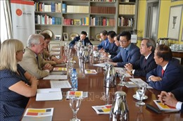 Việt Nam là đối tác quan trọng và tin cậy của Tây Ban Nha