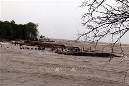 Sạt lở 'bủa vây' Đồng bằng sông Cửu Long - Bài 4: Giải pháp chưa căn cơ