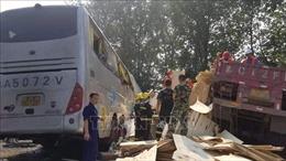 Xe tải đâm xe buýt trên cao tốc, 36 người thiệt mạng