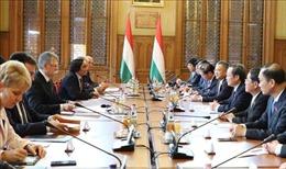 Thúc đẩy mối quan hệ hữu nghị truyền thống và hợp tác, đối tác toàn diện Việt Nam - Hungary