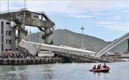 Tìm thấy các thi thể nạn nhân trong vụ sập cầu ở Đài Loan