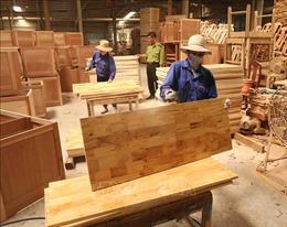 Xuất khẩu gỗ - Bài cuối: Nâng cao năng lực thích ứng