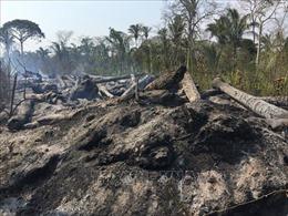 Bolivia dập tắt hoàn toàn các đám cháy rừng Amazon kéo dài suốt 2 tháng