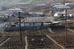 Tổ chức cứu trợ MCC giúp Triều Tiên đối phó với tình trạng thiếu lương thực