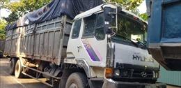 Bỏ trốn khi bị phát hiện đổ trộm rác, tài xế lại phải nhập viện vì rắn độc cắn