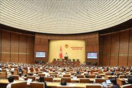 Nâng cao hiệu quả trong tổ chức và hoạt động của Quốc hội
