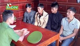 Tạm giữ hình sự 5 đối tượng đầu độc rừng thông ở Đắk Nông