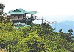 Hoàn thành xử lý các trạm dừng chân trái phép trên đèo Đại Ninh trong tháng 12/2019