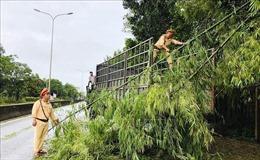Ảnh hưởng bão số 5, mưa lũ cô lập huyện vùng cao Nam Trà My