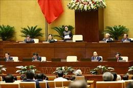 Triển khai các biện pháp, thực hiện hiệu quả các nghị quyết của Quốc hội