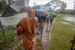 Bão Bulbul làm 44 người thiệt mạng, mất tích tại Bangladesh và Ấn Độ