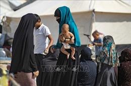 Ba phụ nữ Pháp liên quan đến IS muốn trở về nước