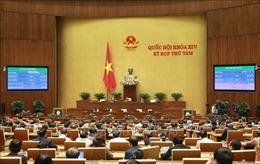 Kỳ họp thứ 8, Quốc hội khóa XIV: Thông qua hai Nghị quyết