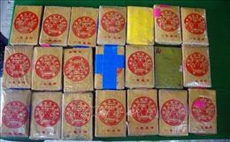 Khởi tố điều tra hai vụ án ma túy trôi dạt vào bờ biển Thừa Thiên-Huế