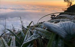 Từ ngày 7-13/12, trời rét về đêm và sáng sớm, có nơi dưới 5 độ C